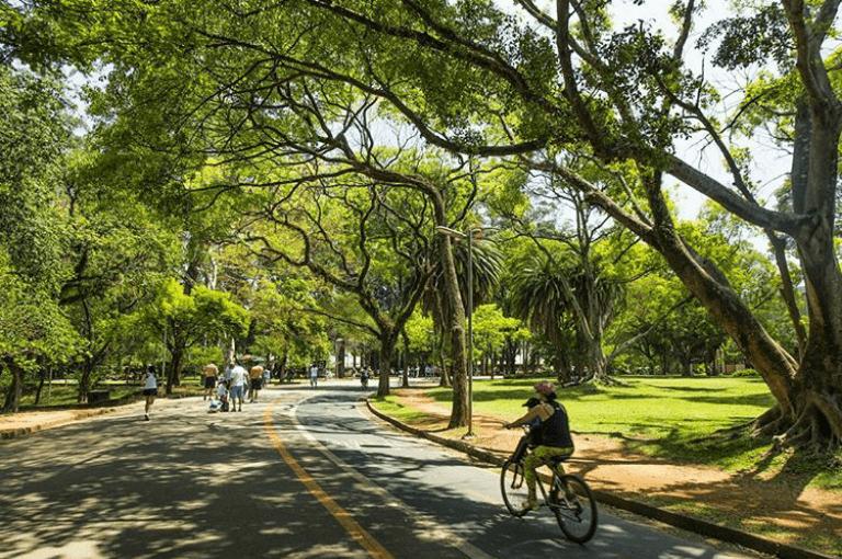 Parque Ibirapuera de dia